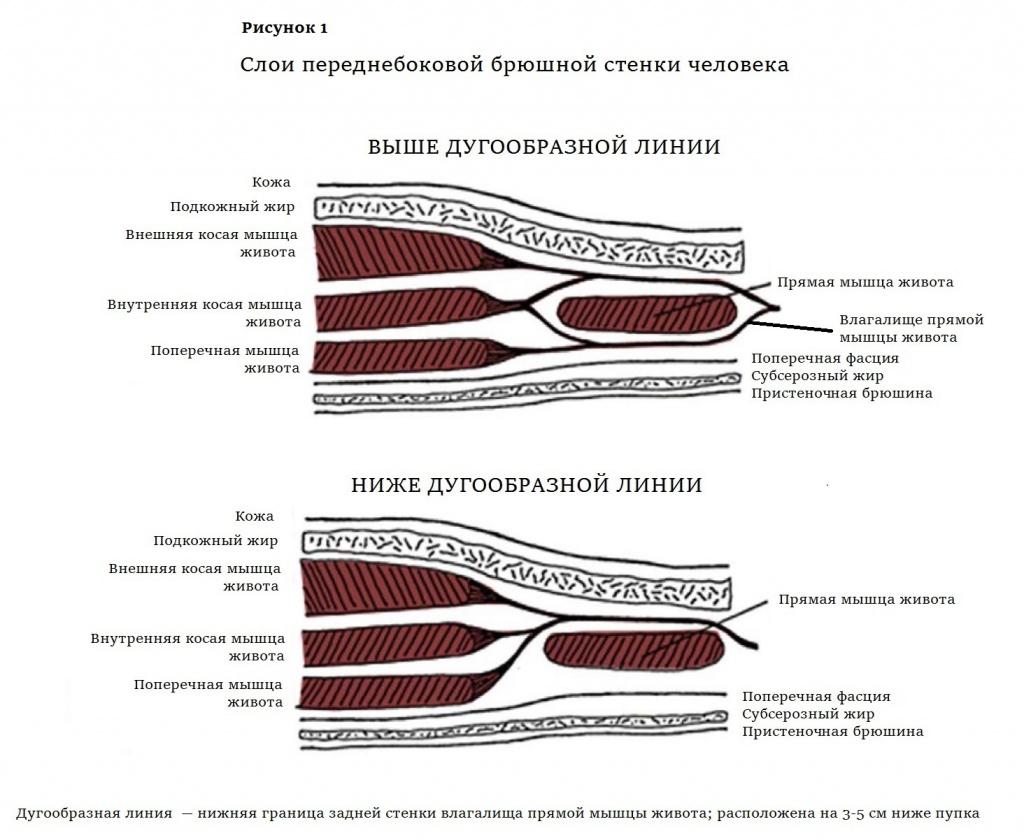 Рисунок 1 (1).jpg